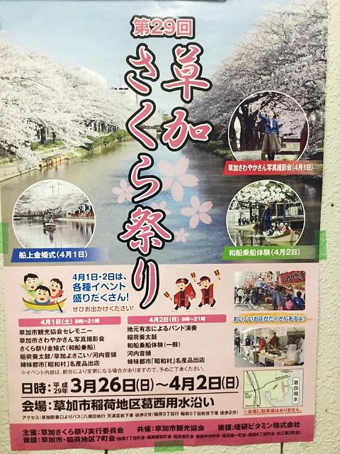soukasakurai.jpg
